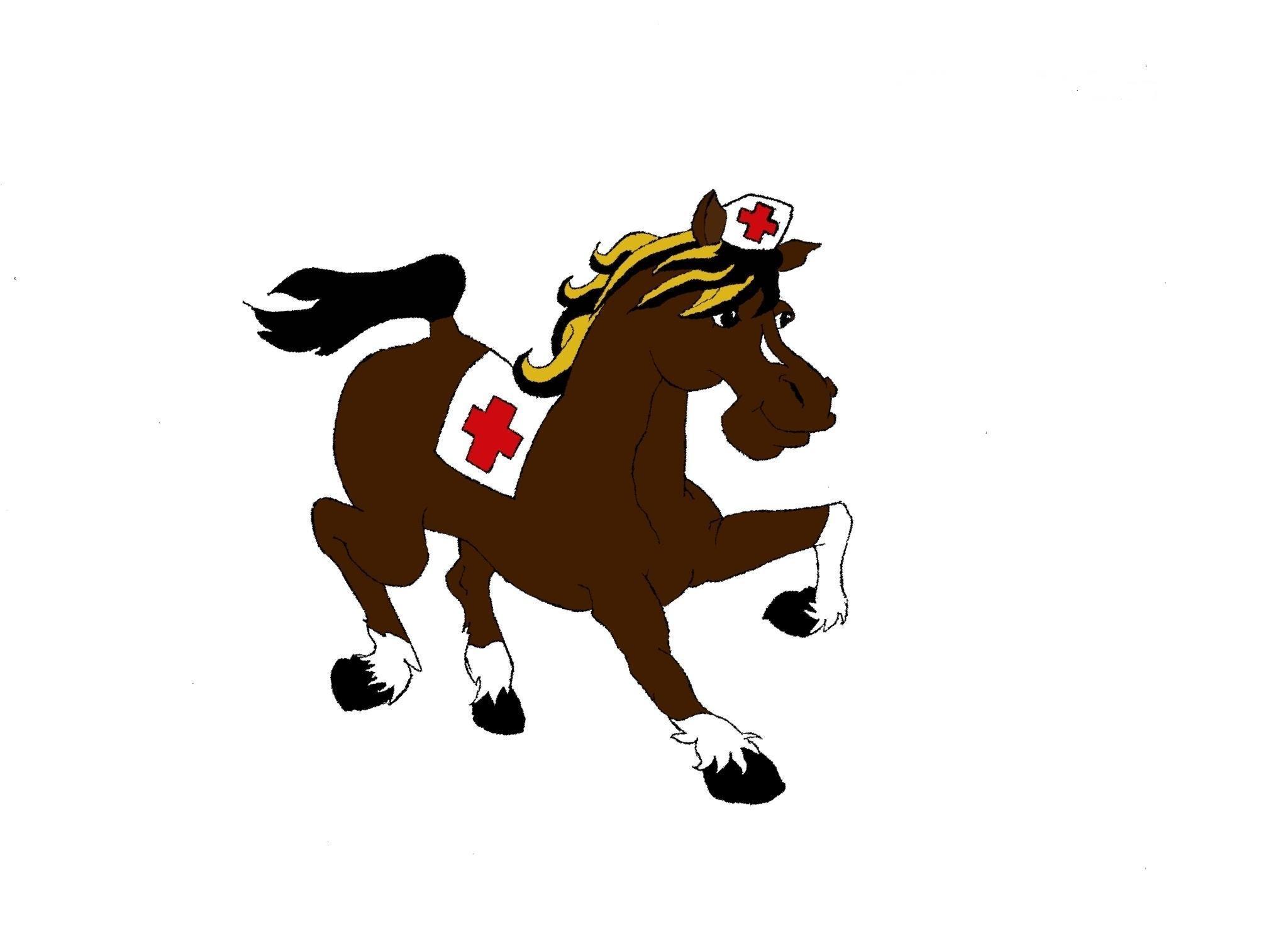 Dr.Kôň-hipoterapia